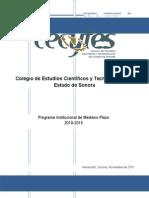 ProgramaInstitucionaldeMedianoPlazoCECyTES20102015 (1).docx
