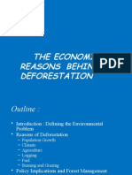 deforestation persentation - env. econ..pptx