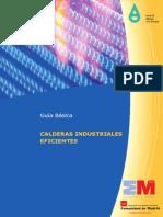 Calderas Industriales Eficientes Fenercom 2013