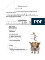 Resumen Anatomía