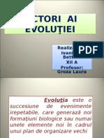 Factorii Evolutiei