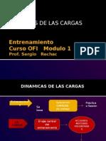 Dinamica de Las Cargas