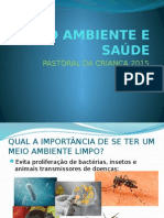 MEIO AMBIENTE E SAÚDE.pptx