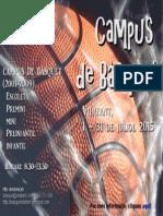 Cartell campus basquet Vilafant_2015