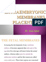 Extra Embryonic Membranes