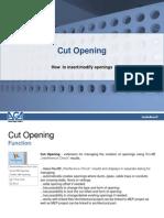Cut_Opening_20120220
