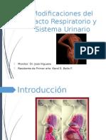 Cambios Fisiológicos del sistema renal y respiratorio