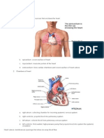 A. Cardiovascular