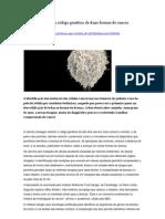 Cientistas decifram código genético de duas formas de cancro, DN 200912