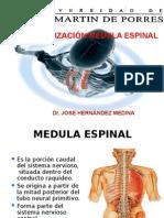 Medula Espinal Sistematizacion