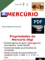 Trabalho Mercúrio - William Schluchting