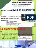 Criopreservacion de Gametos