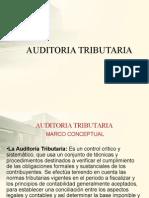 254863748-AUDITORIA-TRIBUTARIA.ppt