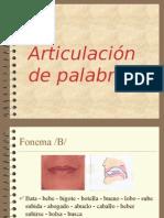 articulacion fonemas
