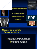 25 Anat Cours MMP 14 15