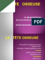 05 La Tête Osseuse 2014 15