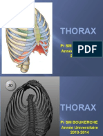 06 Anat Cours Thorax Ossseux 2014