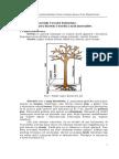 Pb02_v01Wytrzymałość Doraźna Drewna