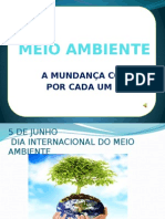 meioambientepowerpoint-110527210723-phpapp01