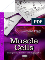 Muscle Cells, Development etc