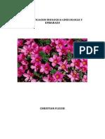 Biodescodificacion y Embarazo.