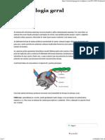 Antenas _ Entomologia Geral
