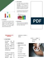 proyecto de palema2014.docx