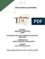 El Sustento Legal Del Derecho Ecologico