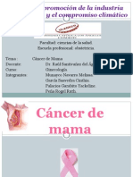 233553026-Cancer-de-Mama.ppt