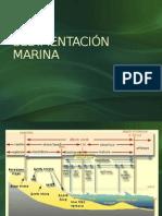 Sedimentación Marina