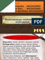 Biodegradasi Oleh Jamur.pptx