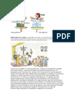 Historia de Arauca