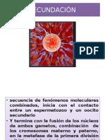 8-fecundación (2).pptx