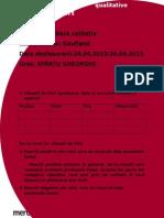Raport Calitativ Zewa Kaufland - Copy