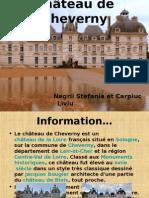 Negrii Stefania Et Carpiuc Liviu.