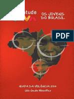 Mapa Violencia, Genecidio afrodescendiente en Brasil 2014