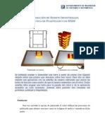 Práctica Paletizado.pdf