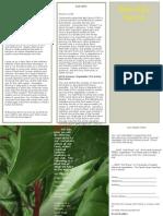 BeeRay Farms Brochure 2015