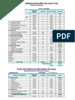 Costo de produccion instalacion cacao 1° y 2° año