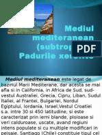 Mediul mediteranean (1)