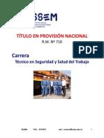 SST presentación 2015.pdf