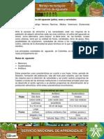 El Cultivo Del Aguacate (Palta), Razas y Variedades-1