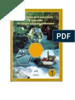 Reducción de Riesgos Químicos Ambientales INE-SEMARNAP