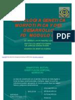 Fenotipos modulo 02
