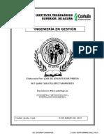 Ensayo Jose de Jesus Rocha Pineda.doc