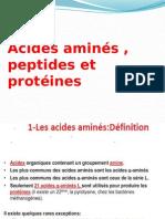 13 Peptide
