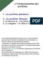 15 Proteines Fibreuses