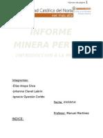 Estructura Informe Pertho