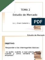 TEMA 2 Estudio de Mercado