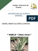La Sabila (Aloe Vera)